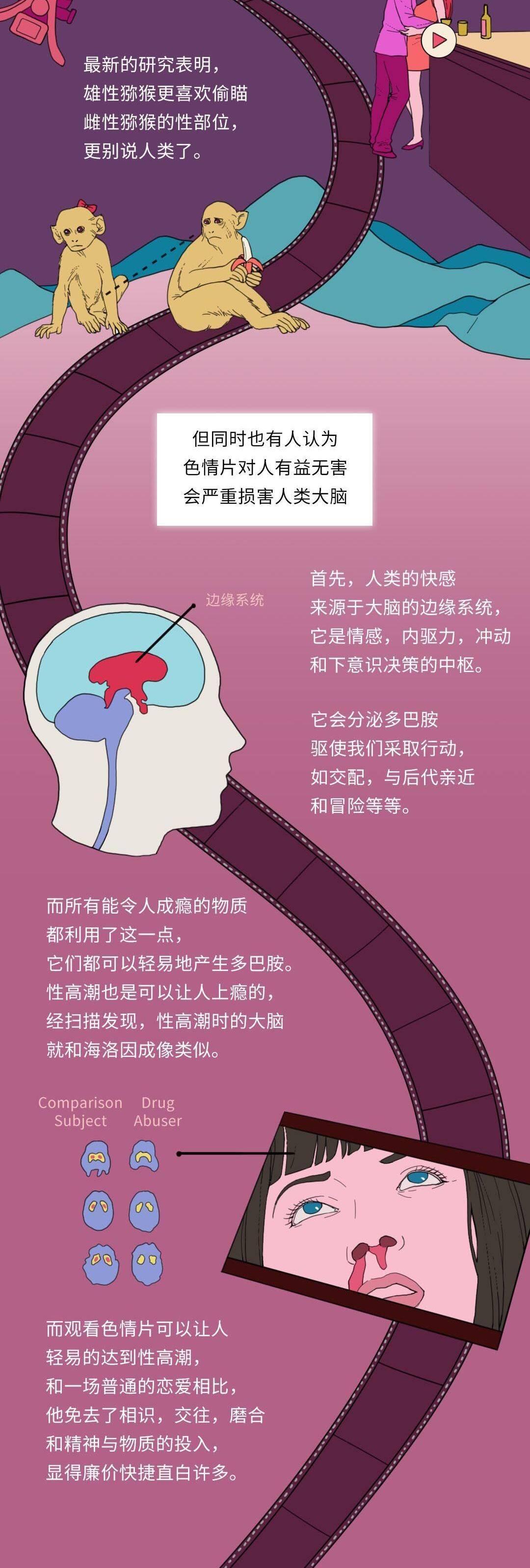 (涨知识)看片无数伤大脑